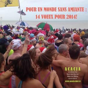 1er janvier 2014: bains des givrés - Malo les Bains
