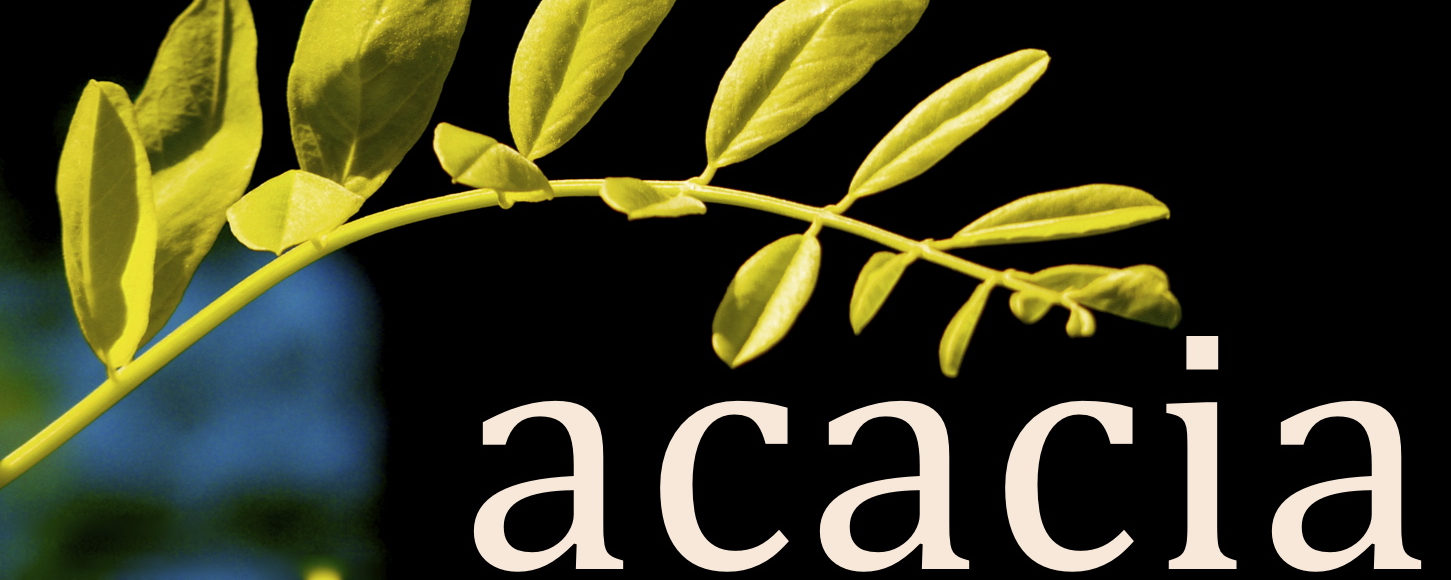 Agence Acacia